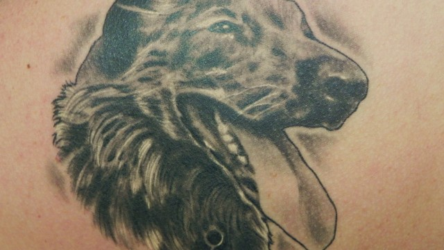 Dog Portrait Tattoo