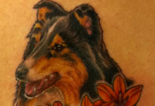 Collie Dog Portrait with Flowers